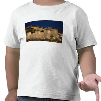 Ávila, Castile y León, España Camiseta