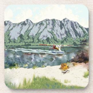 Avión de Alaska Bush y viaje de la pesca