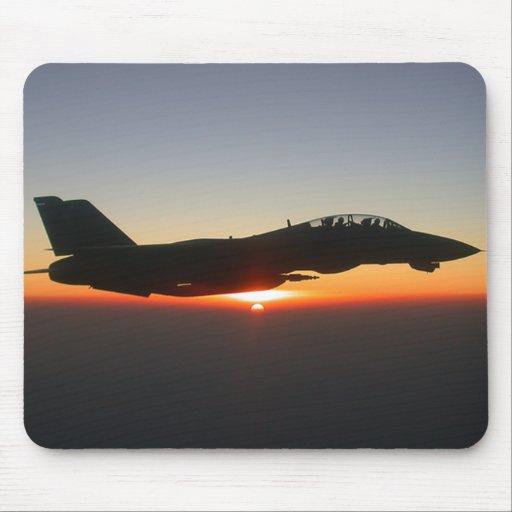 Avión de combate de F 14 Tomcat Tapete De Raton