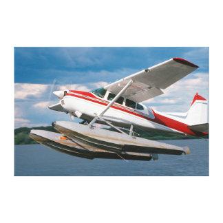 Avión de mar que saca, las cataratas Victoria, Lona Estirada Galerías