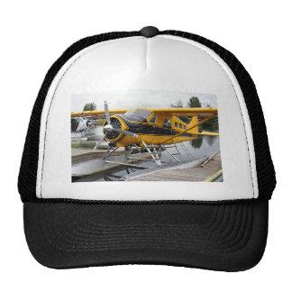 Avión del flotador del castor, capilla del lago, A Gorro