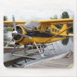 Avión del flotador del castor, capilla del lago, A Tapetes De Ratón