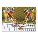 Avión especial de las acrobacias aéreas de Pitts Tarjeton