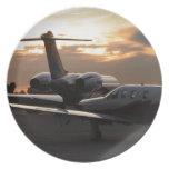 Aviones de jet plato de comida