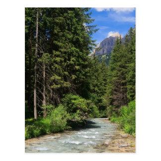 Avisio river postcard