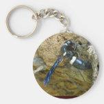 Avispa azul del embadurnador de fango llaveros personalizados