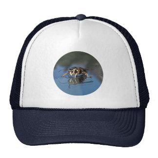 Avispa blanca gorro