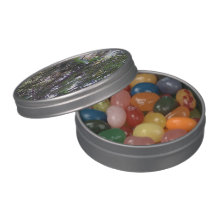 Avocado Tree Candy Tin