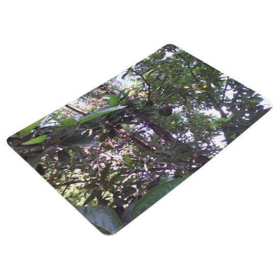 Avocado Tree Floor Mat