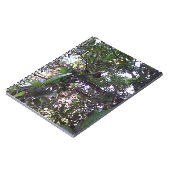 Avocado Tree Notebook