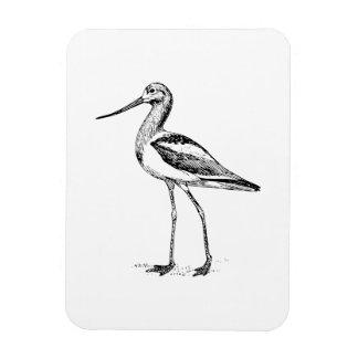 Avocet Bird Drawing Magnets