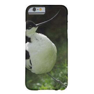 Avocet bird iphone case