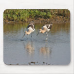 Avocets Mouse Pad
