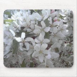 Avon's Flowers Mouse Pad