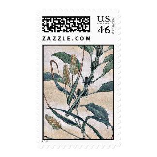 Awa - goma / Kanemori Ukiyo-e. Stamp