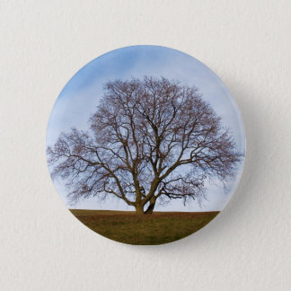 awaiting seasons pinback button