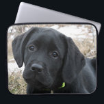 "Awaiting Spring - Black Lab Computer Sleeve<br><div class=""desc"">Black Labrador Puppy - Early Spring Hunt Show your love for the worlds most popular breed with this original and stylish Black Lab laptop sleeve . Original Artwork by Judy Burrows @ Black Dog Art A wonderful gift to any black lab lover , this labrador sleeve is sure to protect...</div>"