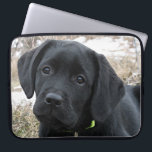 """Awaiting Spring - Black Lab Computer Sleeve<br><div class=""""desc"""">Black Labrador Puppy - Early Spring Hunt Show your love for the worlds most popular breed with this original and stylish Black Lab laptop sleeve . Original Artwork by Judy Burrows @ Black Dog Art A wonderful gift to any black lab lover , this labrador sleeve is sure to protect...</div>"""