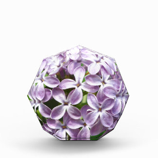 award with photo of beautiful purple lilacs