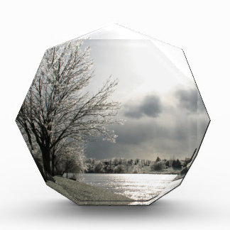 award with photo of icy winter landscape