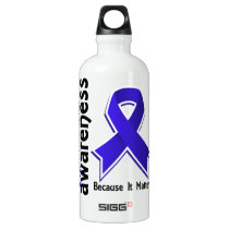 Awareness 5 Dysautonomia Aluminum Water Bottle