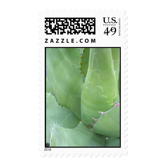 Awesome Agave (1) Postage Stramps