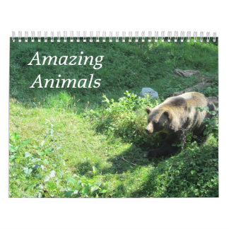 Awesome Animals Calendar