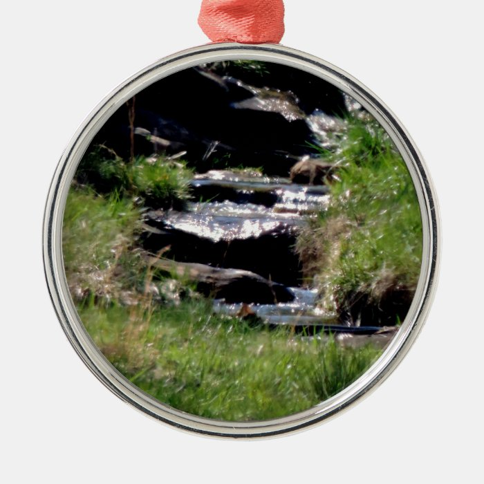 Awesome Babbling Brook in Spring Art Photo Metal Ornament