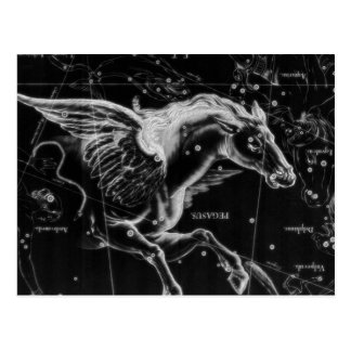 awesome beautiful mystic flying wings horse postcard