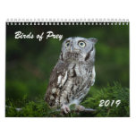 Awesome Birds of Prey 2019 photo calendar