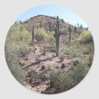 Awesome Cactus Garden Classic Round Sticker