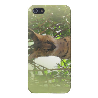 Awesome Cat iPhone 5 Covers