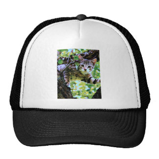 Awesome Cat Who Climbed Tree Photo Design Trucker Hat