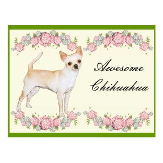 Awesome Chihuahua Postcard
