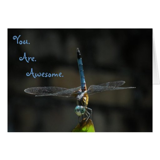 Awesome Dragonfly Thank You Friend Note Card – Thank You Note to Friend