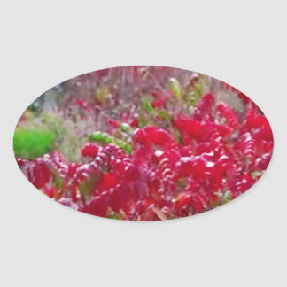Awesome Fall Red Leaf Flower Colors on gifts fun Oval Sticker