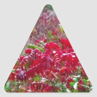 Awesome Fall Red Leaf Flower Colors on gifts fun Triangle Sticker