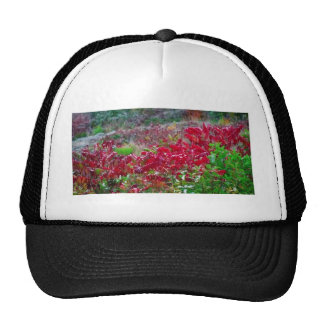 Awesome Fall Red Leaf Flower Colors on gifts fun Trucker Hat