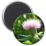 awesome flower magnet