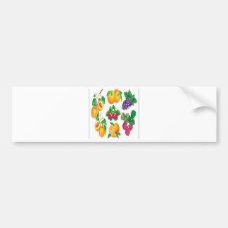 Awesome fruit selection design bumper sticker