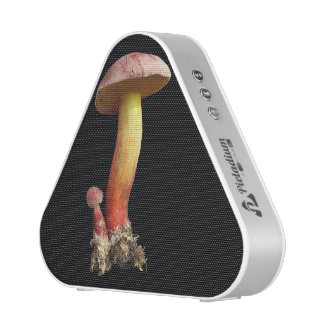Awesome fungus speakers