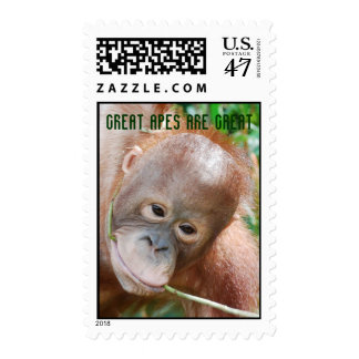 Awesome Great Ape Relax in Forest Postage