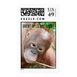 Awesome Great Ape Relax in Forest Stamps