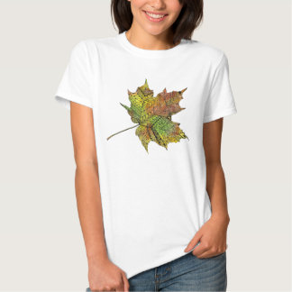 Awesome Hand Illustrated Artsy Maple Leaf Tee Shirt