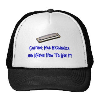 Awesome Harmonica Hat!