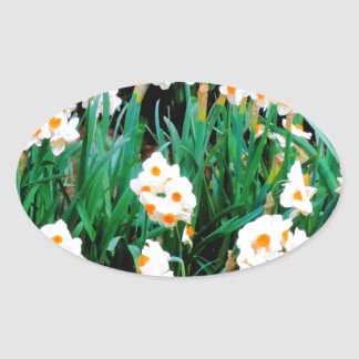 Awesome Jonquil Flower Display Natural Design Oval Stickers