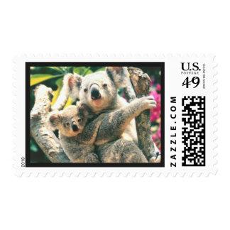 Awesome Koala Bear Postage Stamp