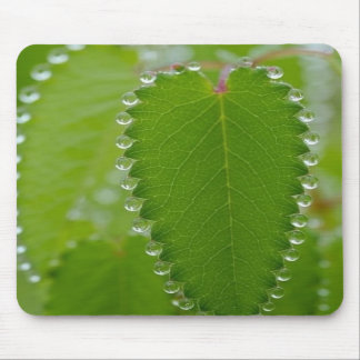 Awesome Morning Dew Mousepad