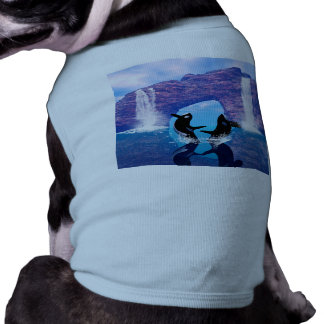 Awesome orca doggie shirt