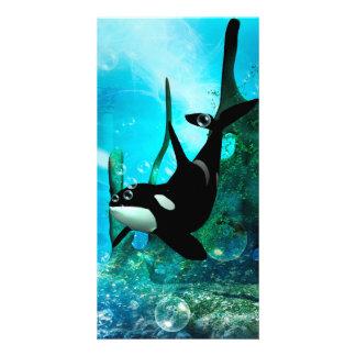 Awesome orca photo card